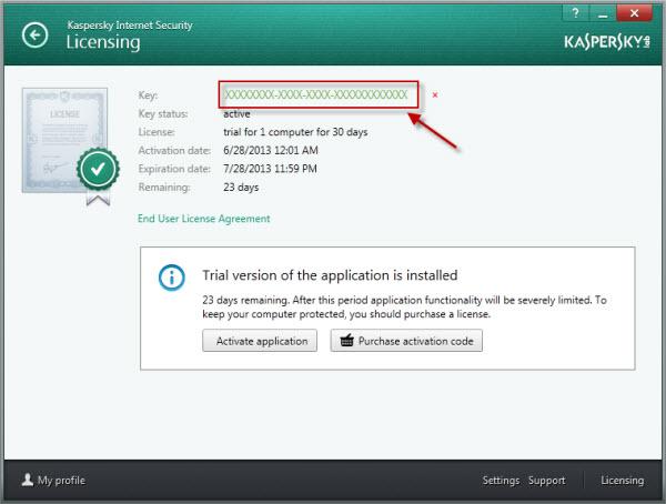 kaspersky enter activation code 2014
